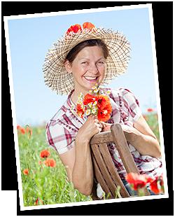 Unsere Gartenfee Ilona, schreibt in Ihrer Kolume zum Thema Garten und Haushalt